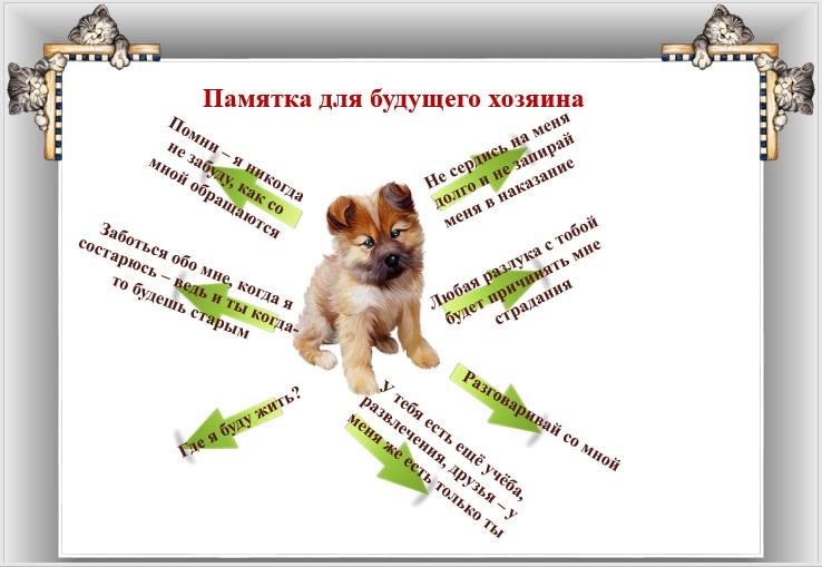 Они имеют право на жизнь - Светлана Корнева