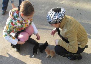 Приют для животных Твои друзья, директор М.В. Грабовенко