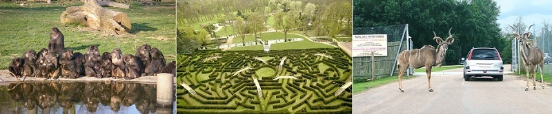 Сафари парк Туари, Франция