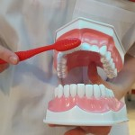 Пресса Кидзании в Москве Colgate стоматология
