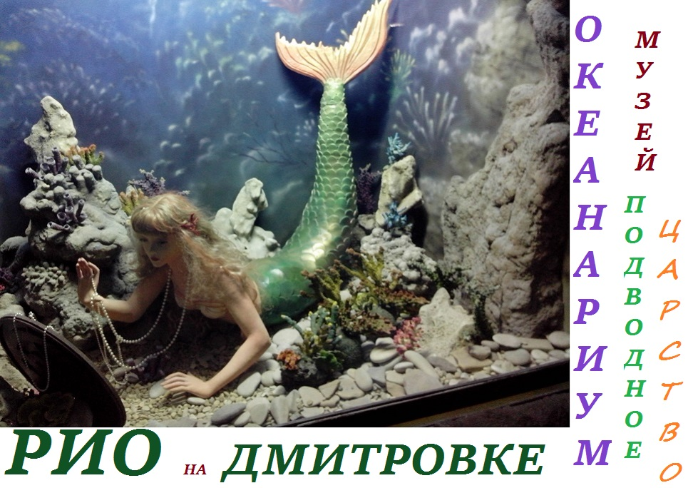 Океанариум в РИО на Дмитровке Москва